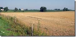 Farm-Country-Vista